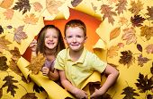 Advertising Agency. Place For Your Text. Gold Background. Autumn Leaves Festival. Hello Autumn And A poster