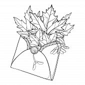 Vector Bouquet With Outline Acer Or Maple Ornate Leaves And Samaras In Black In Open Craft Envelope  poster