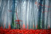 Autumn landscape, Fall scene. Beautiful Autumnal park with colorful bright red leaves and old dark t poster