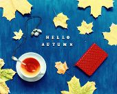 autumnal poster