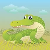 pic of alligator baby  - Baby Animal collection: Crocodile