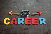 Company Career Path Job Opportunities Concept By Colorful Wooden Alphabets As Word Career And Compas poster
