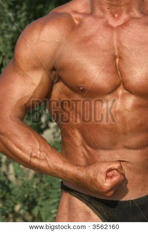 Bodybuilding 08