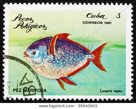 Postage stamp Cuba 1981 Moonfish