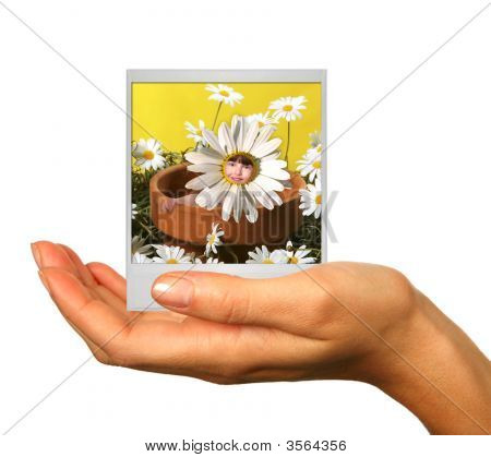 Holding A Photograph Of A Child In Daisy Pot