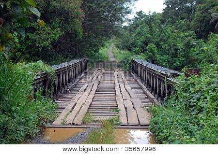 Timber Bridge In Papua New Guinea
