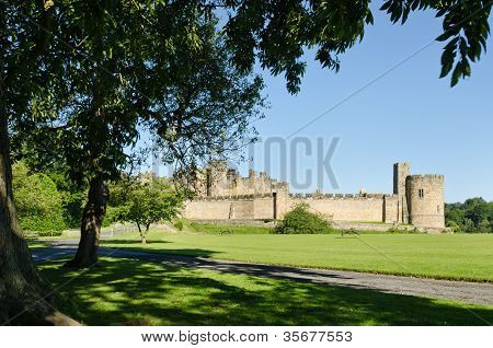 Alnwick Castle Framed By Leaves