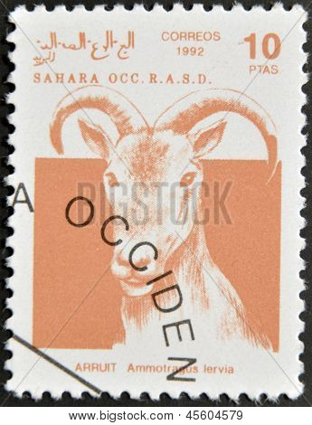 Sahara - Circa 1992: A Stamp Printed In Sahrawi Arab Democratic Republic Shows A Scimitar Arruit