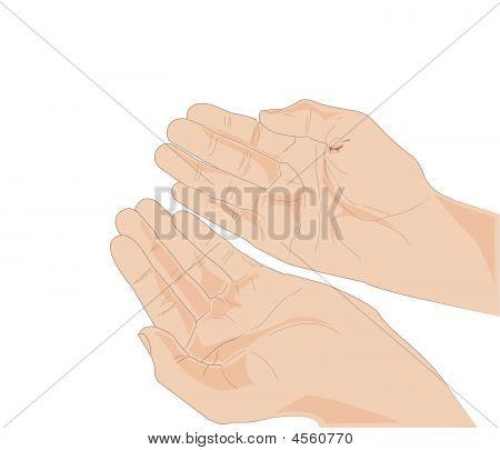 Vectorized Hands