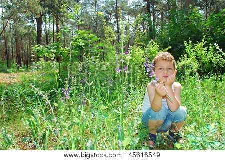 In A Pine Forest, A Little Serious Boy Is Sitting In The Tall Grass And Flowers