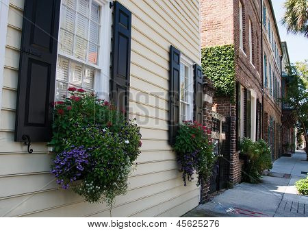 Wood Siding And Brick Townhomes With Flowers
