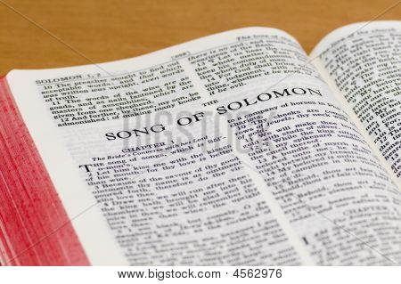 Bible Page - Song Of Solomon