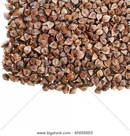sementes de trigo cru close-up macro tiro superfície isolada em um fundo branco