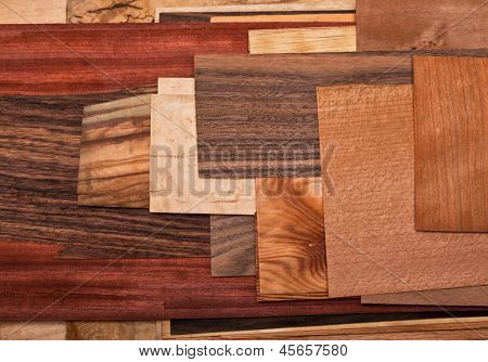 collection of different natural wood