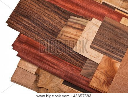 different kind of wood on white background