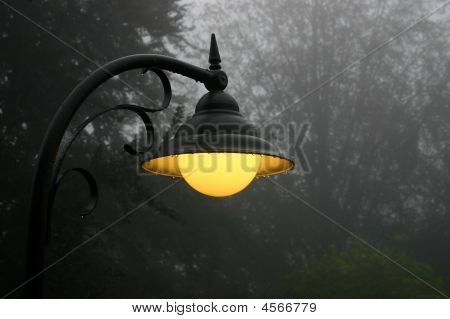 Misty Street Light