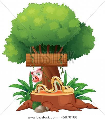 Illustration of a snake with a wooden signboard and a pig at the back on a white background