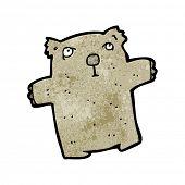 stock photo of wombat  - cartoon wombat - JPG