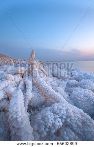 Dead Sea With Rock Of Salt In Sunset Scenary