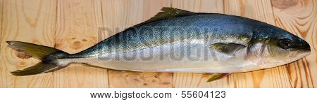 Yellowtail Fish On Wooden Board