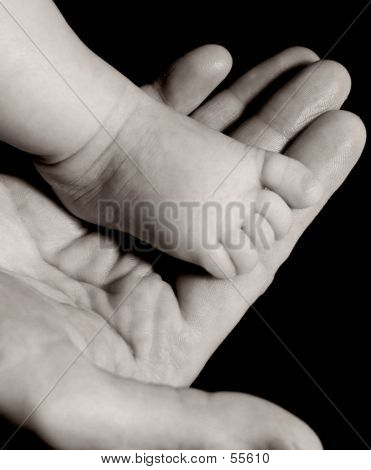 Baby Foot On Mans Hand In Black And White
