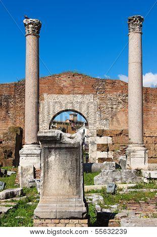 Columns And Ruins Of  Basilica Aemilia In The Roman Forum