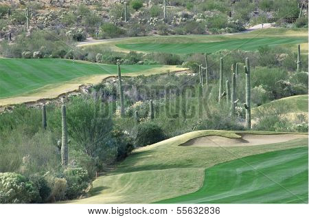 Arizona Golf Course