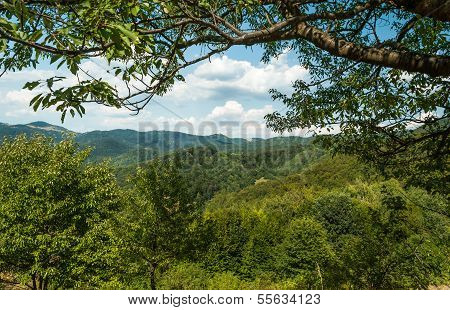 Green Hills During The Sunny Day With Blue Sky And White Clouds