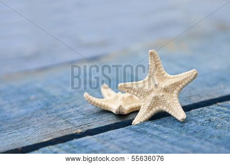 Colorful starfish on wood resembling blue sea