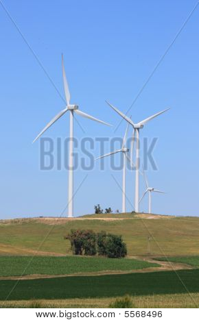 Wind Turbines Farm - Renewable Energy