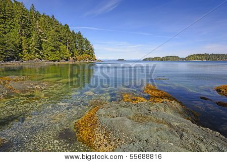 Tidal Bay On An Ocean Coast
