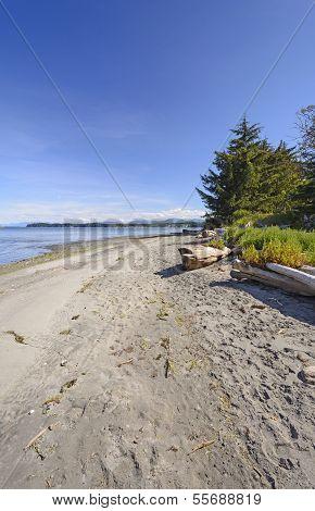 Remote Beach On An Ocean Coast