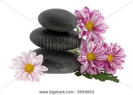 Hot Stones With Flower