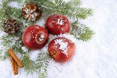 Red apples with fir branches and bumps in snow close up