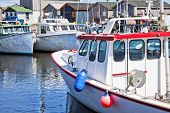 foto of lobster boat  - View of the harbor and wharf in North Lake - JPG