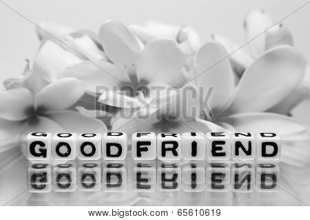 Good Friend In Gray