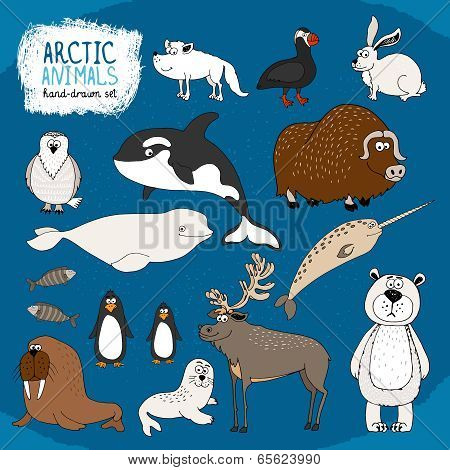 Set of hand-drawn arctic animals