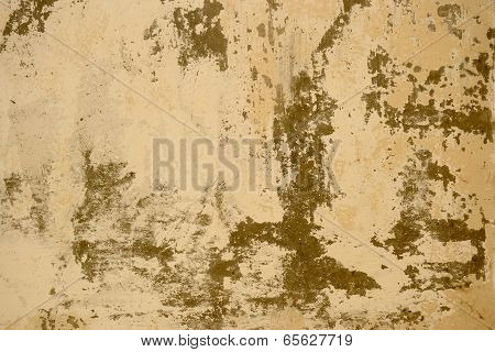 Beige, Brown Background With Dabs Of Whitewash