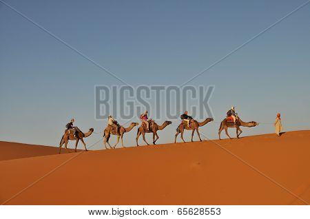Merzouga Desert - October 01: Tourists In A Camel Caravan In Merzouga Desert, Morocco On October 01,