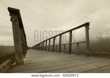 Footbridge Walkway. Sepia Tone. Tablas De Daimiel. Ciudad Real. Spain.