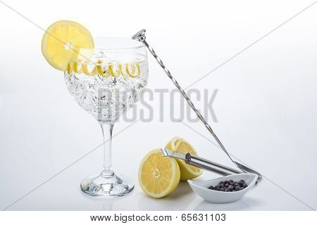 Perfect Gin And Tonic With A Lemon Twist