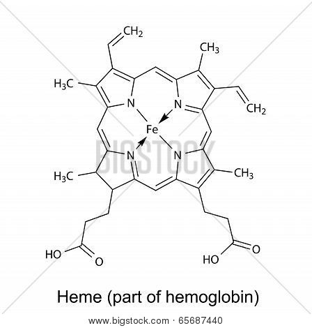 Structural Chemical Formula Of  Heme Molecule