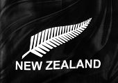 stock photo of fern  - Closeup of silky New Zealand silver fern flag - JPG
