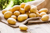 picture of carbohydrate  - Farm fresh baby potatoes displayed on a hessian sack on a rustic wooden table at farmers market a healthy nutritious root vegetable popular in vegetarian and vegan cuisine