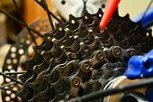foto of grease  - grease lubricating a dirty bicycle gears cogwheel