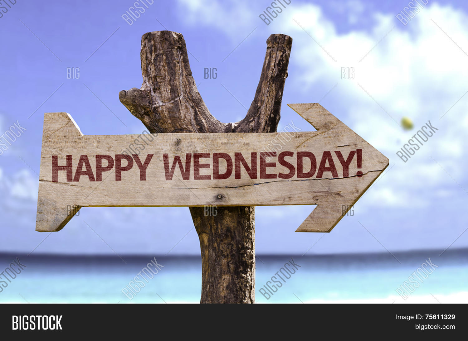 Happy Wednesday Sign Beach On Image & Photo  Bigstock. Concordant Signs. Mild Signs. Allergic Reaction Signs. Guideline Signs. Railway Crossing Signs. Dlj Ral Signs. Rain Garden Signs. Late Signs Of Stroke