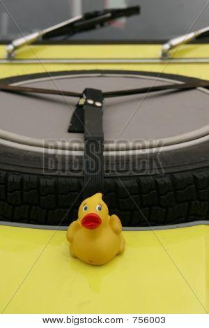little yellow rubber duck