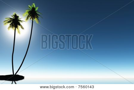 Tropic palm trees and blue sky