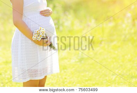 Lovely Pregnant Woman With Flowers In Summer Sunny Day, Tender Moment