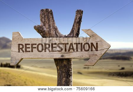 Reforestation wooden sign isolated on arid background